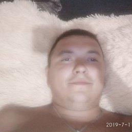 Вова, 29 лет, Киев