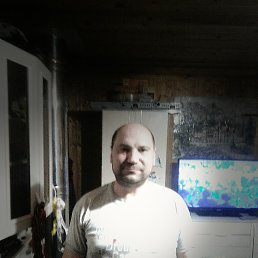 Андрей, 40 лет, Тула