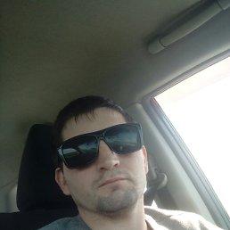 Tolya, 29 лет, Горный
