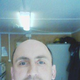 Дмитрий, 42 года, Сосновый Бор