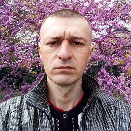 РОМАН, 34 года, Чаплинка