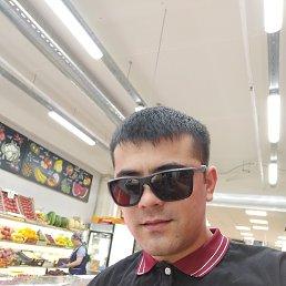 Миша, 25 лет, Ставрополь