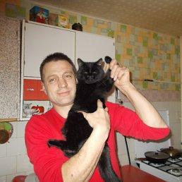 Евгений, 43 года, Новосибирск