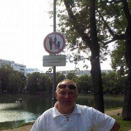 андрей, 53 года, Окуловка