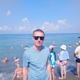 Денис, 28 лет, Нижний Тагил