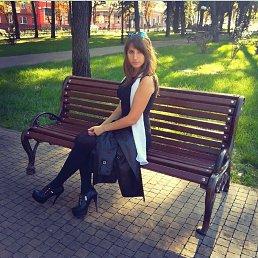 Lapa, 29 лет, Чернигов