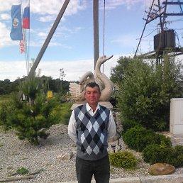 Бахром, 50 лет, Калининград