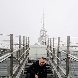 Андрей, 29 лет, Шаркан