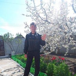 Василий, 52 года, Мелитополь