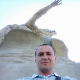Егор, 37 лет, Волгоград