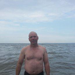 Николай, 43 года, Курск