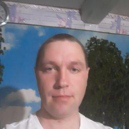 Михаил, 39 лет, Каменка