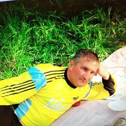 Володимир, 51 год, Васильков
