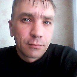 Кирилл, 39 лет, Порхов