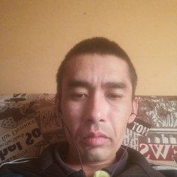 Авазбек, 29 лет, Новосибирск
