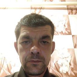 Максим, 37 лет, Доброполье село