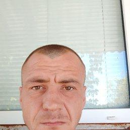 Владимир, 33 года, Малин