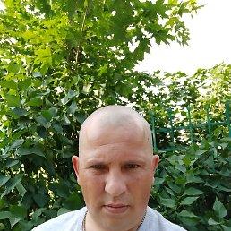 Феликс, 32 года, Курск