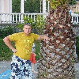 Алексей, 35 лет, Мичуринск