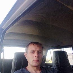 Юрий, 29 лет, Липецк