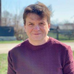 Сергей, 55 лет, Кировоград