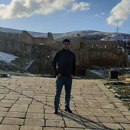 Марат, 28 лет, Махачкала