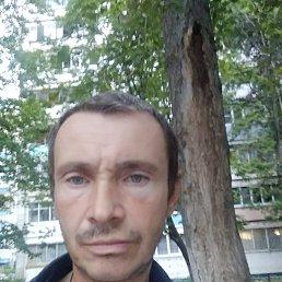 Дмитрий, Воронеж, 43 года