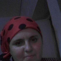 Амина, 32 года, Махачкала