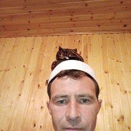 Сергей, 39 лет, Кемерово