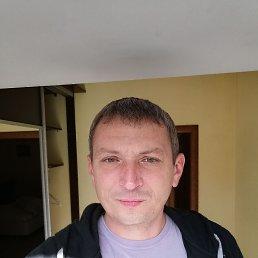 Роман, 45 лет, Липецк