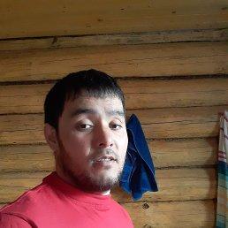 Жими, 29 лет, Воронеж