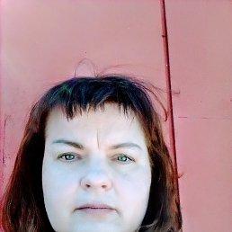 Галина, 43 года, Нижний Новгород