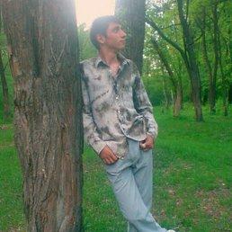 Виктор, 28 лет, Житомир