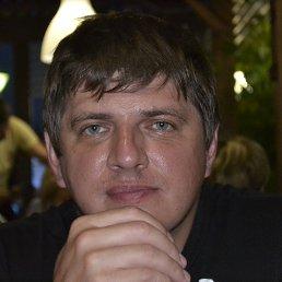 Николай, 44 года, Долгопрудный