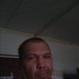 Алексей, 38 лет, Нижний Новгород