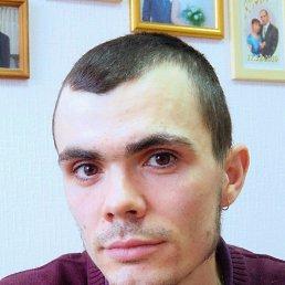 Андрей, 29 лет, Пермь