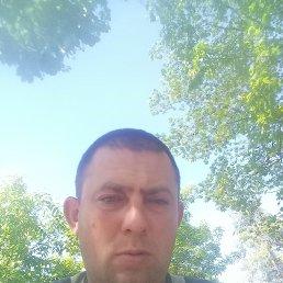 Александр, 36 лет, Воронеж