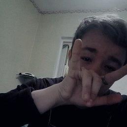 Дмитрий, 17 лет, Краснодар