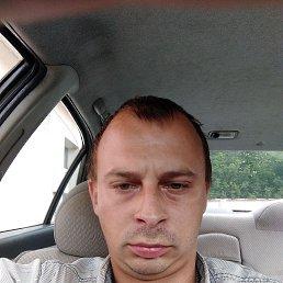 Felix, 28 лет, Брест