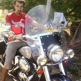 Игорь, 21 год, Симферополь