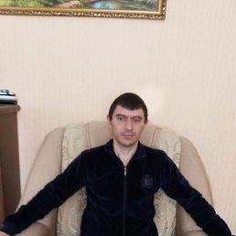 Алексей, 37 лет, Болград