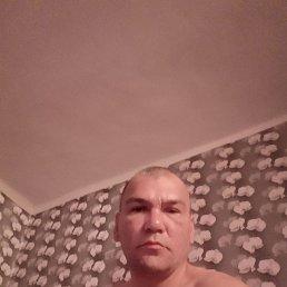 Sergei, 40 лет, Рубцовск
