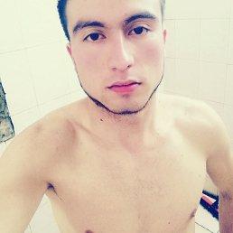Оташ, 23 года, Серпухов
