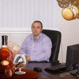 Николай, 40 лет, Краснодар