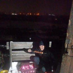 Дима, 31 год, Новосибирск