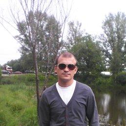 Анатолий, Нижний Новгород, 31 год