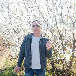 Алексей, 48 лет, Волгоград