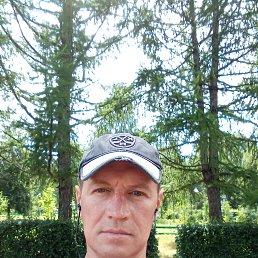 Евгений, 46 лет, Кола