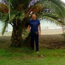 Кирилл, 41 год, Воронеж