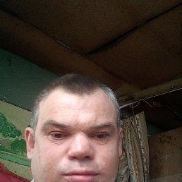 Андрей, 40 лет, Барнаул